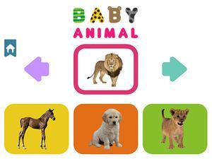 Play Baby Animal Game